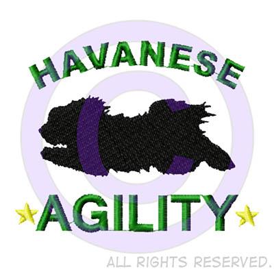 Havanese Agility Shirts
