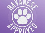 Havanese Approved Stickers