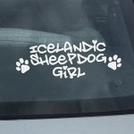 Icelandic Sheepdog Car Window Decal