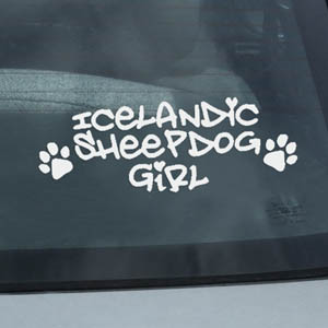 Icelandic Sheepdog Car Window Decal