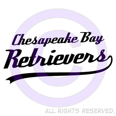 Chesapeake Bay Retriever Shirts