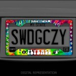 Tie Dye Flyball license plate frame