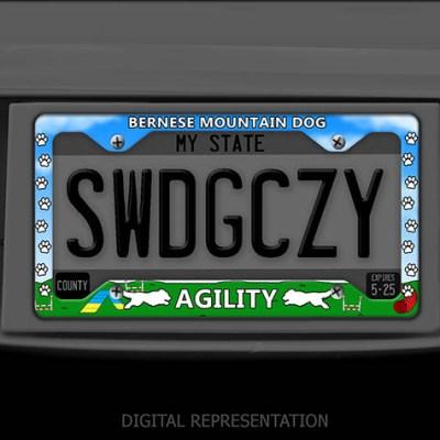 Bernese Mountain Dog Agility License Plate Frames