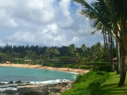 hhw-shoreline