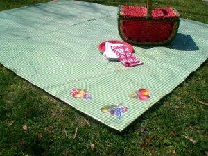 picnic_it_up__