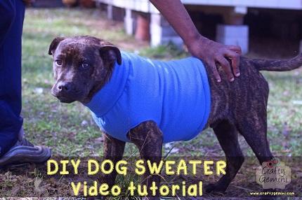 Video tutorial: Fleece dog sweater