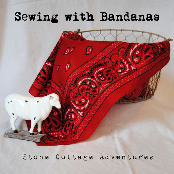 2 Things You Can Sew From Bandanas