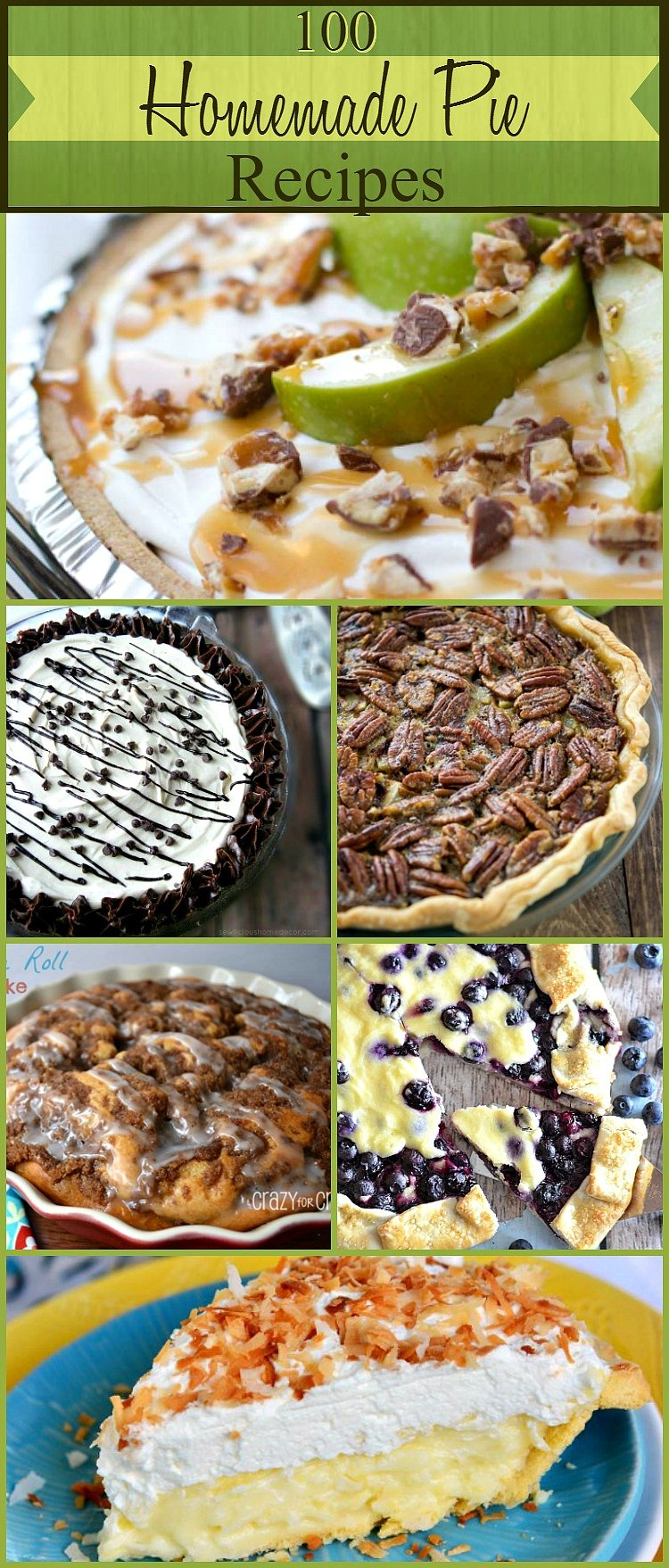 100 Best Homemade Pie Recipes at sewlicioushomedecor.com