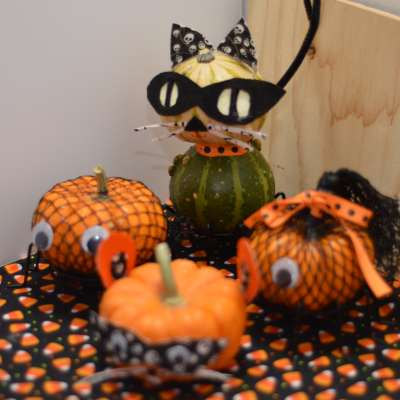 Mini Pumpkin Halloween Menagerie