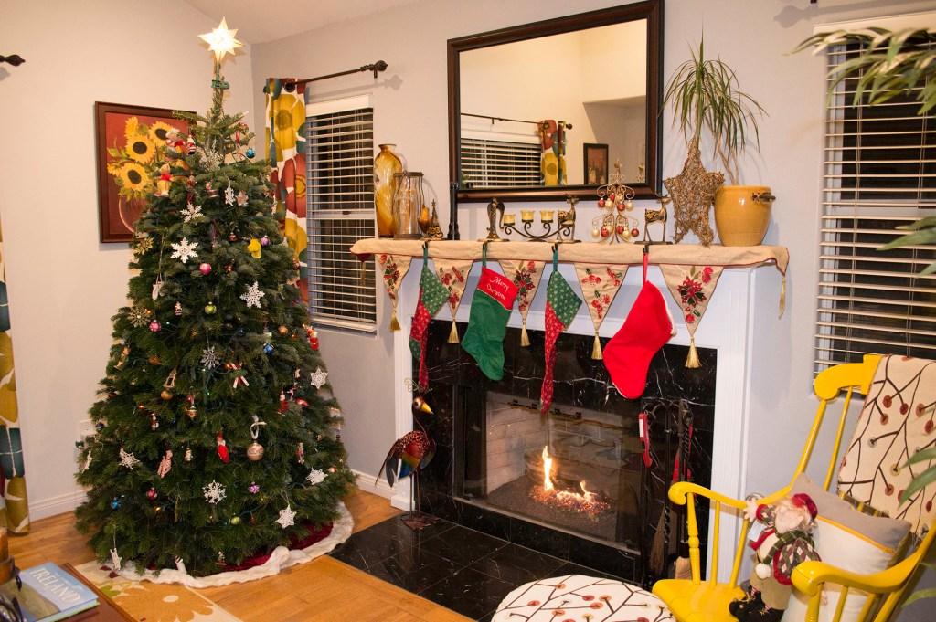 Our 2015 Christmas Tree - A California Christmas