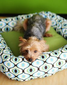 From DIY Style, Pet Pattern Tutorials