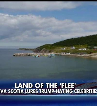 Land of the Flee, Jump or Trump