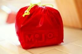 Sew Well - Gear Bag