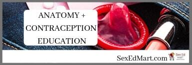 Anatomy + Contraception Education