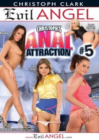 Anal Attraction 5 Amateur XXX