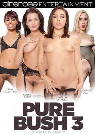 Airerose Entertainment, Adam H., Gina Valentina, Keisha Grey, Abella Danger, Cadence Lux, Hairy, Fetish, Pure Bush 3, Pure-bush-3