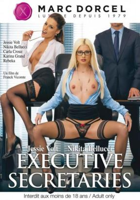 Executive secretaries (2016) - full free hd xxx dvd
