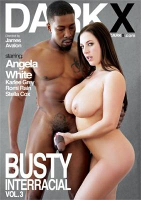 Busty Interracial Vol. 3 XXX Video by Dark X