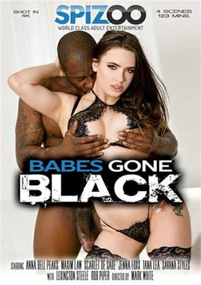 Babes Gone Black Porn DVD on demand from Spizoo XXX