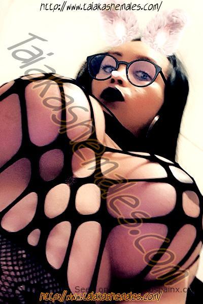 Transexuales de Perú desnudas con bodys de rejilla mostrando pechos grandes.