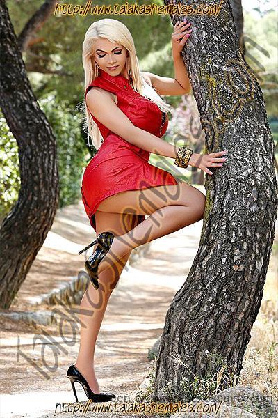 Rubias travestis en un bosque con pechos de infarto y tacones.