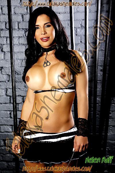 Modelos transexuales con bonitos pechos y exuberantes cuerpos