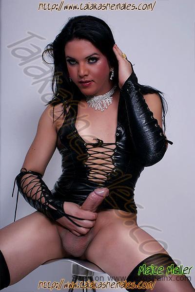 Mujeres travestis desnudas mostrando su pene duro.