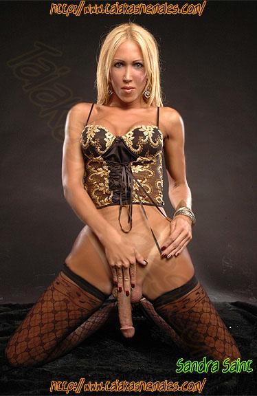 Bellas modelos transexuales delgadas desnudas mostrando su verdadero sexo.