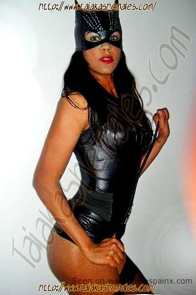Modelos transexuales con grandes pechos y exuberantes cuerpos en conjuntos de cuero.