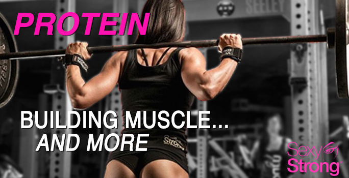 protein building muscle