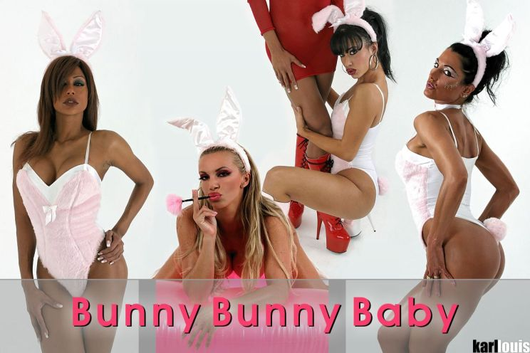bunny_bunny_baby_Featured
