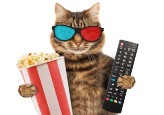 TV and digital advertising need each other