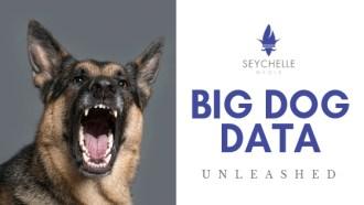 BIG DOG DATA Seychelle Media Digital Advertising