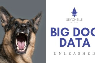 BIG DOG DATA Seychelle Media Digital Advertising