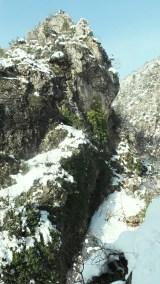 dağ-yeşil