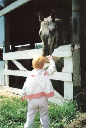 ec_going_places_foundation_appaloosa_stallion_child2