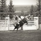 Went to the rodeo this year. Top an you believe this crazy stuff happens just 2blocks from my house. Lol