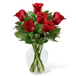 Last minute gift delivery of valentines roses with 5 long stem red roses