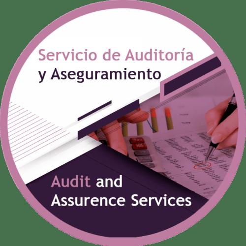 servicio de auditoria y aseguramiento