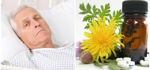 cele-mai-bune-plante-medicinale-cu-efect-antidepresiv