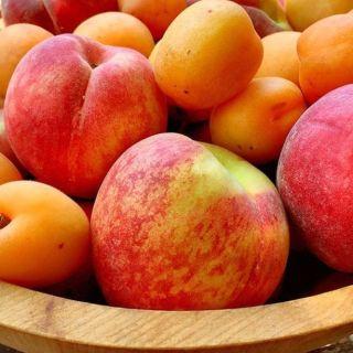 caisele si piersicile - fructele verii