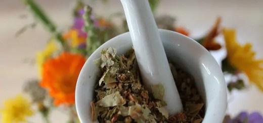 Ce plante te pot ajuta in cele mai intalnite boli
