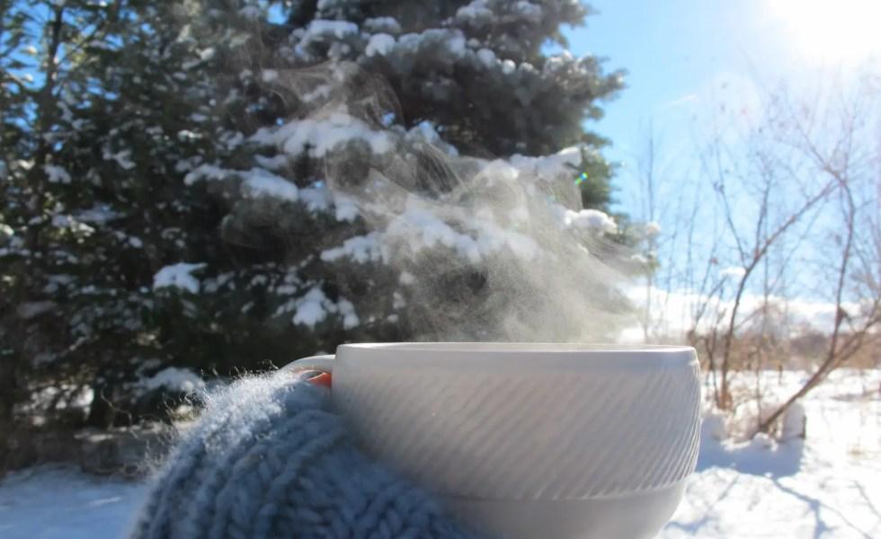 Remedii siberiene contra gastritei