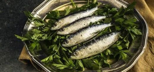 consumul-de-sardine