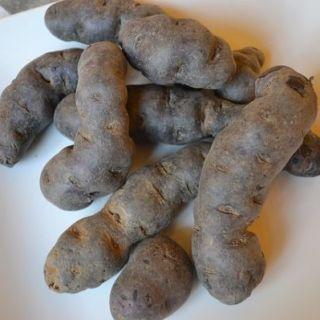 cartofi-violeti