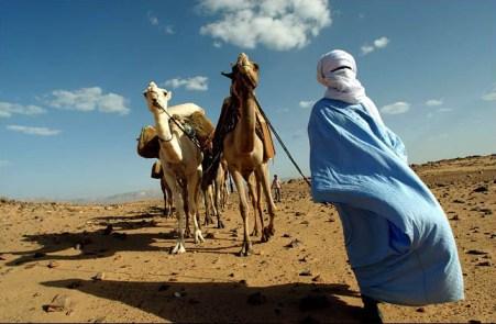 Tuareg, 2 camels in southern Libya desert 0711