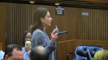 "Theodore Wafer's defense attorney Cheryl Carpenter pleaded with the jury to ""send Ted home."" – Photo: Thandisizwe Chimurenga"