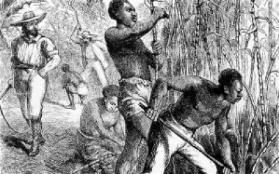 """Africans, such as those depicted in this 1858 engraving working on a British West Indies sugar cane plantation, were typically worked to death. Caribbean nations have formed a coalition to demand reparations from all their former colonial """"masters."""" – Photo: Lordprice Collection, Alamy"""