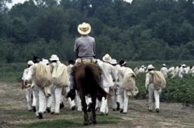 Prisoners are marched to work in the fields at the Ellis Unit, Texas, in 1978. – Photo courtesy The Marshall Project