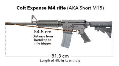 Dimensions of the M-16 rifle allegedly used in Toveet's death. The M-16 is part of the M-4 family. – Photo: David Sheen